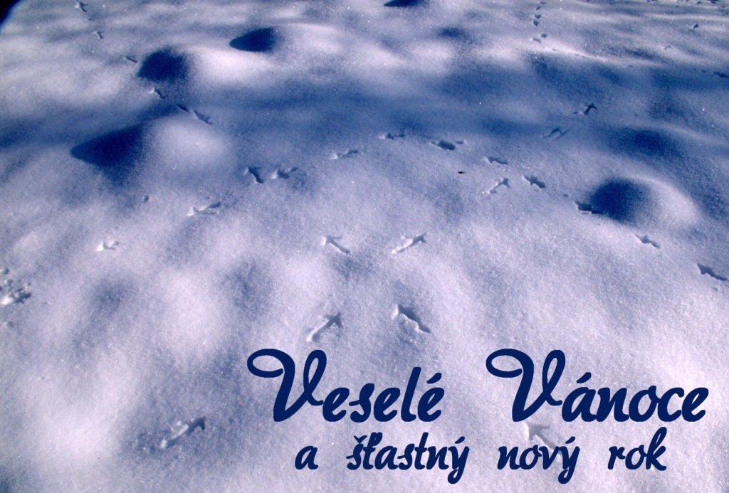 Ptačí stopy ve sněhu - přání